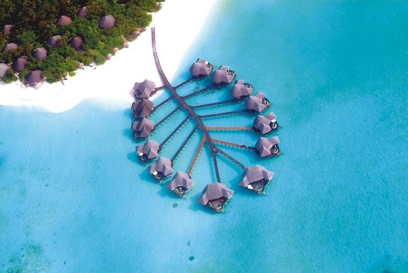 Coco Palm Dhuni Kolhu, Maldivi 4