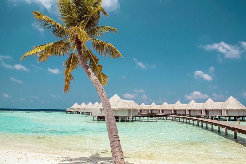 Drift Thelu Veliga Retreat, Maldivi 2